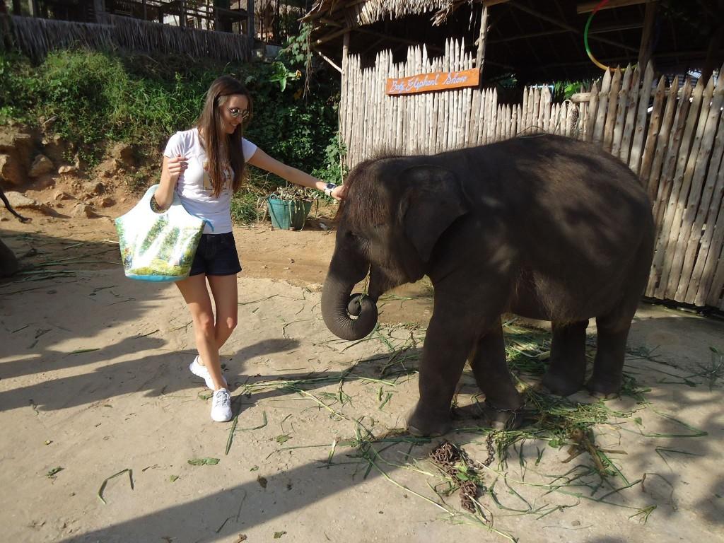 Floriana Cristea Thailanda