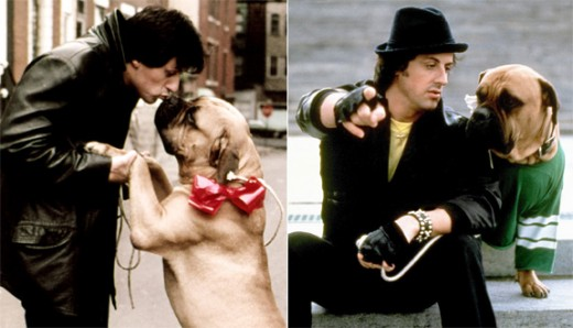 Sly Stallone with his dog