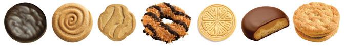 gsusa-cookies