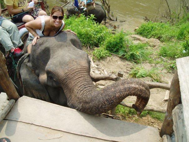 Elodie elephant Asia